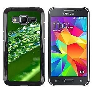Smartphone Rígido Protección única Imagen Carcasa Funda Tapa Skin Case Para Samsung Galaxy Core Prime SM-G360 Green Water Drop Leaf / STRONG