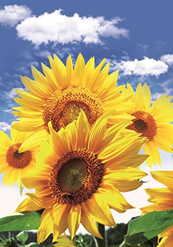 Sunflower Garden Flag Colorful Spring Summer Blooms Double Sided 12.5'' X 18''