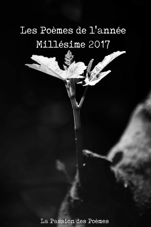 Les Poèmes De Lannée Millésime 2017 Amazones La