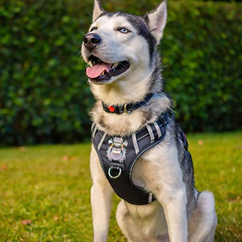 Babyltrl Large Dog Harness No Pull Anti-Tear Adjustable Pet Reflective Oxford Soft Vest for Large Dogs Easy Control Harness (Dog Collar Included) Collar Dog Pet Harness