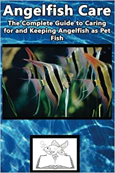 Angelfish Care The Complete Guide To Caring For And