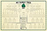 Family Tree Chart Genealogy