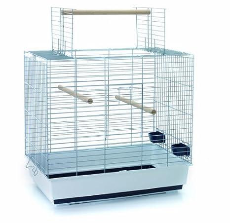 SAVIC jaula Sirocco 60: Amazon.es: Productos para mascotas