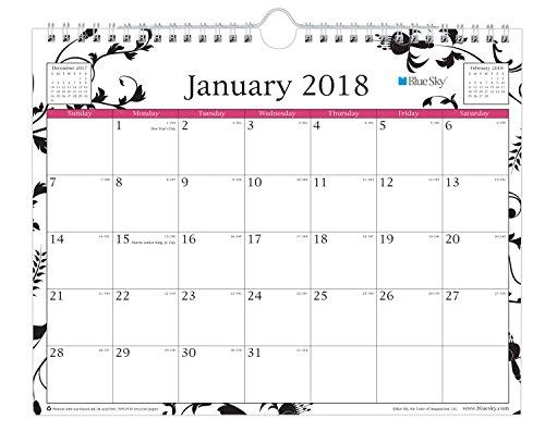 "Blue Sky 2018 Wall Calendar, Twin-Wire Binding, 11"" x 8.75"", Analeis"