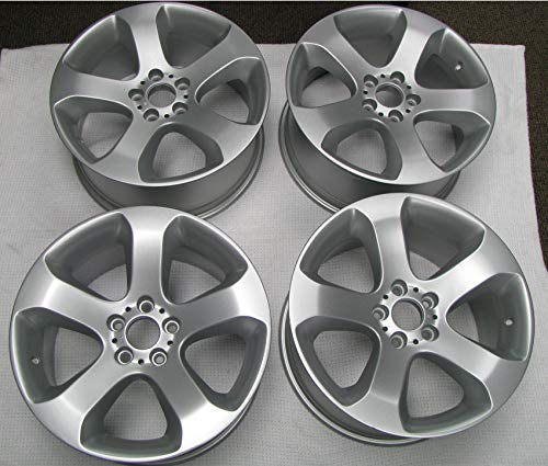 OEM Wheel Silver Powder Coating Paint (1 Pound)