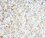 "100% Custom Made (5mm) 1000 Bulk Pieces of Mini Size ""Glue-On"" Flatback Embellishments for Decorating, Made of Acrylic Resin w/ Shiny Iridescent Crafting Rhinestone Crystal Iced Diamond Style {White}"