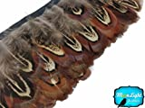 Almond Ringneck Pheasant Feather Trim, 1 Yard