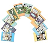 """10 'Dog Days Birthday Assortment' Note Cards (with Envelopes) - Assorted & Boxed Greeting Cards - Funny Cartoon Bday Cards for Friends, Family, All Ages - Stationery Notecards (4"""" x 5 ¼"""") #A2665BDG"""