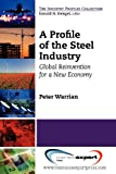 A Profile of the Steel Industry : Global Reinvention for a New Economy, Warrian, Peter, 1606494171
