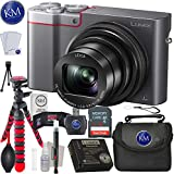 Panasonic Lumix DMC-ZS100 Digital Camera (Silver) + 32GB Memory + Essential Photo Bundle