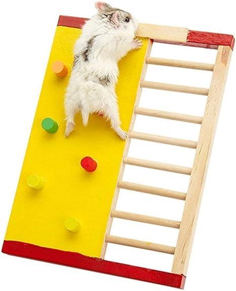 Hamster de madera colorida escalada pared y escalera Molar Gerbil Rata Chinchillas Guinea Pig pequeño animal juguete