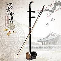 GFEI Instrumento de cuerda Erhu conjunto completo