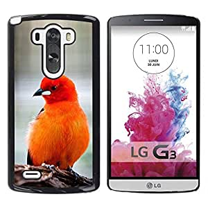 PC/Aluminum Funda Carcasa protectora para LG G3 D855 D850 D851 bird feathers orange red furry beak / JUSTGO PHONE PROTECTOR