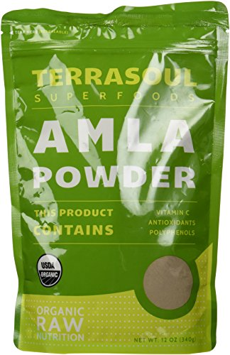 Terrasoul Superfoods Amla (Amalaki) Berry Powder (Organic), 12 Ounces