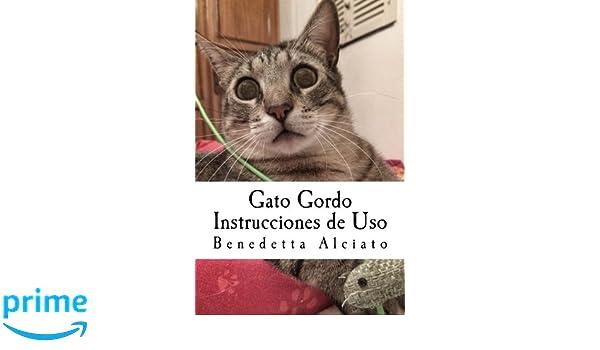 Gato Gordo: Instrucciones de Uso (Spanish Edition): Benedetta Alciato, Gisela Fernández: 9781543035117: Amazon.com: Books