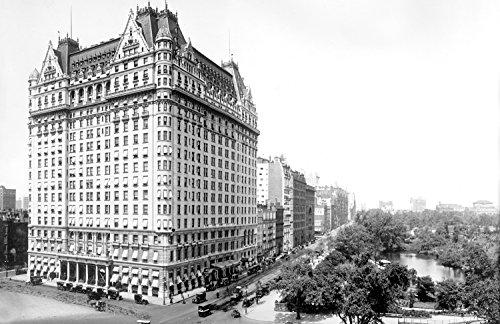 1900-1910 The Plaza Hotel & Central Park, New York City, New York Vintage Photograph 11