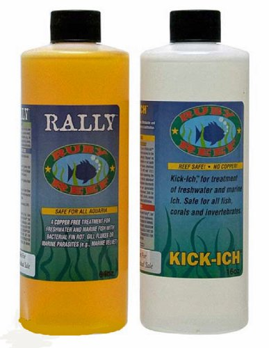 16 Ounce Reef (Ruby Reef ARR11161 Kich-Ich and Rally Aquarium Combo Pack Water Treatment , 16-Ounce)
