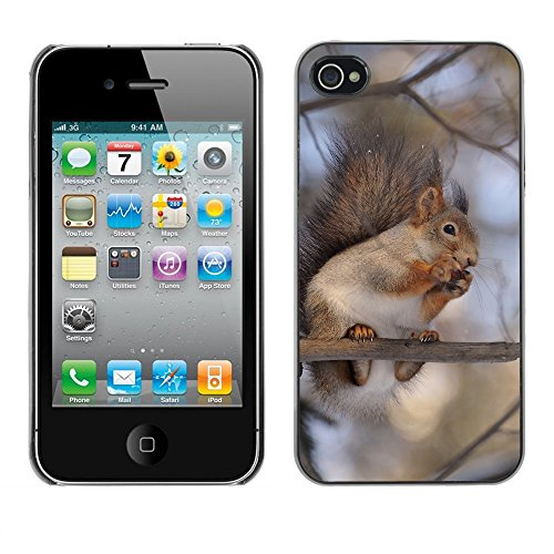 Premio Sottile Slim Cassa Custodia Case Cover Shell // F00015250 oiseau // Apple iPhone 4 4S 4G
