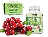Chanca Piedra Kidney Stone Breaker by Logic Nutra