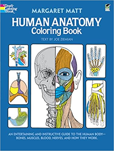 Human Anatomy Coloring Book Dover Childrens Science Books Margaret Matt Joe Ziemian 8601404263682 Amazon