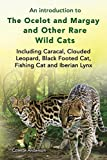 fishing cats - An introduction to The Ocelot and Margay and Other Rare Wild Cats Including Caracal, Clouded Leopard, Black Footed Cat, Fishing Cat and Iberian Lynx