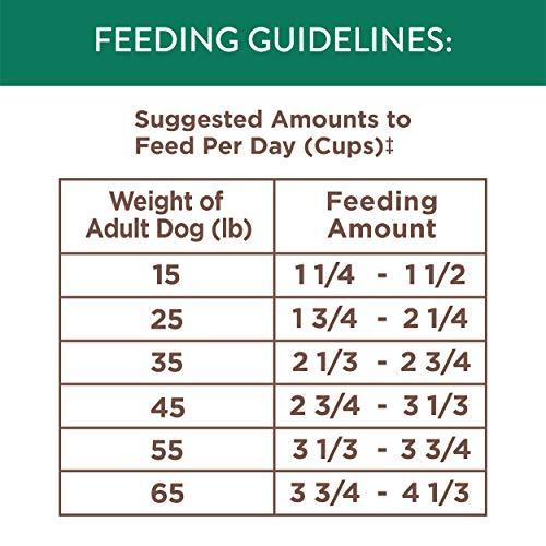 NUTRO WHOLESOME ESSENTIALS Natural Adult Dry Dog Food Pasture-Fed Lamb & Rice Recipe, 30 lb. Bag