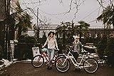 Schwinn Sivica 7 Cruiser Bike for Women with