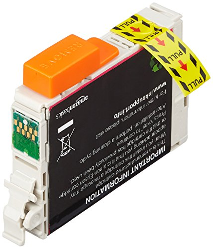 AmazonBasics Remanufactured Ink Cartridge Replacement for Epson T071 2