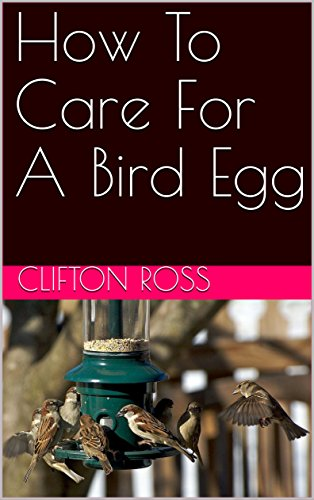 Craft books hobbies ebooks read craft books vietseavn books read e book online how to care for a bird egg pdf fandeluxe Image collections