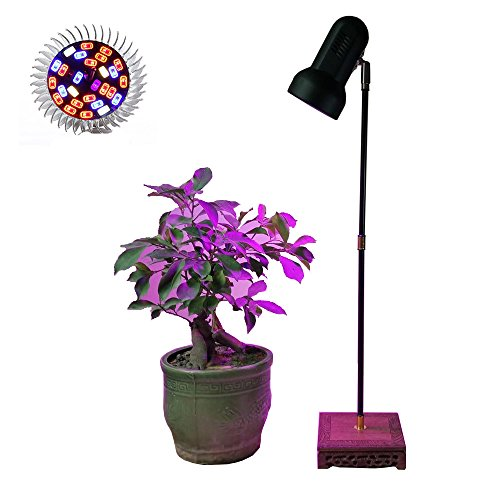Indoor Plant LED Grow Light Stand Desk Lamp with 30W Full Spectrum LED Growing Bulb for Home Garden Indoor Plant Veg Flower by AiHihome
