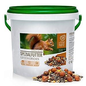 Nourriture pour Écureuils 1 kg pour Écureuils et Tamias – Mélange d'aliments de Première Qualité, Adapté à l'espèce et…