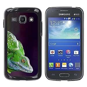 Cubierta protectora del caso de Shell Plástico || Samsung Galaxy Ace 3 GT-S7270 GT-S7275 GT-S7272 || Lizard Commando @XPTECH