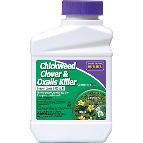 BONIDE PRODUCTS 061 O7688476 Bonide Chemical Chickweed, Clover and Oxalis Killer, 1