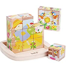 9 pcs Large Size Educational Preschool Wooden Cube Block Jigsaw Puzzles, Best Birthday Gift Toy for age 3 4 5 Years Old and Up Toddlers Kids Baby Children Boys Girls
