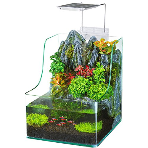 Penn plax aqua terrarium planting tank with aquarium for for Amazon fish tanks for sale