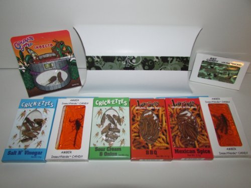 Custom Chocolate Edible Box - EXTREME EDIBLE INSECTS SAMPLER- Crickets 2- Larvets 1- Chocolate Covered Insects 1- Ant Candy 1- Amber Scorpion 1- Amber Insects in custom decorative box by Hotlix
