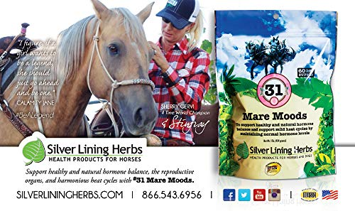 Mare Moods | Supports Mares Healthy and Natural Hormone Balance | Calms Moody Mares To Be More Manageable | Made By Silver Lining Herbs in the USA of Natural Herbs by Silver Lining Herbs (Image #2)