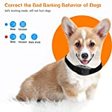 Boence Dog Bark Collar, Anti-Barking Collar,7