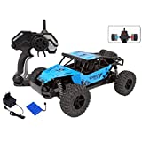 MousePotato 1:16 Scale High Speed Off Road Monster Truck Racing Car (METAL-BLUE)