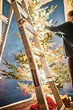 TACKLIFE Telescoping Ladder, 17 Feet Aluminum