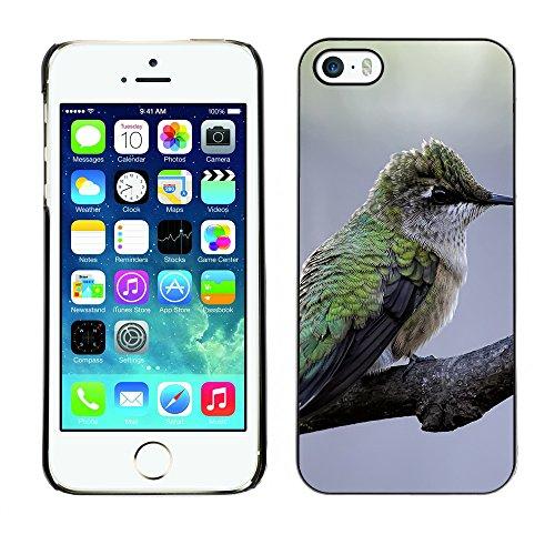 Premio Sottile Slim Cassa Custodia Case Cover Shell // F00008086 oiseau // Apple iPhone 5 5S 5G