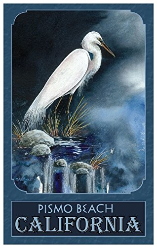 Pismo Beach California Snowy Egret Travel Art Print Poster by Dave Bartholet (12