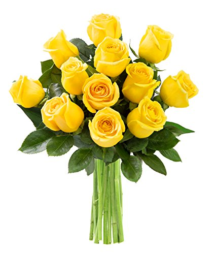 KaBloom Yellow Sunshine Bouquet of 12 Fresh Cut Yellow Roses (Farm-Fresh, Long-Stem)
