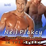 Three Wrong Turns in the Desert | Neil Plakcy