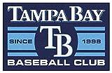Tampa Bay Devil Rays Baseball Club Starter Decor Area Rug 19 x 30 - Tampa Bay Rays Home Decor