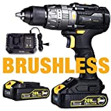 Brushless Drill Driver, Cordless Impact Drill with 2pcs 2.0Ah Batteries, 30minsFast Charger, 530