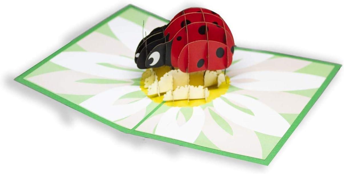 Biglietto di Auguri con Origami La Coccinella