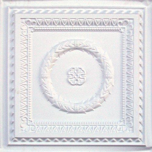 Faux Ceiling 24x24 White Matte