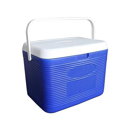 LIYANLCX Mini refrigerador portátil, refrigerador y Calentador ...