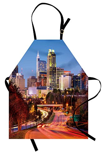 Ambesonne United States Apron, Raleigh North Carolina USA Express Way Business District Building Skyscrapers, Unisex Kitchen Bib Apron with Adjustable Neck for Cooking Baking Gardening, Multicolor]()